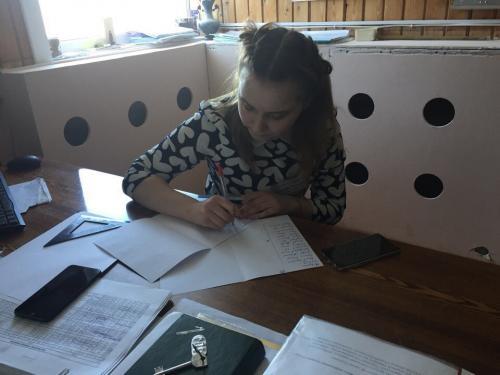 Борисова Татьяна, гр. № 34 (дублёр преподавателя математики)